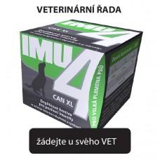IMU4 CAN XL
